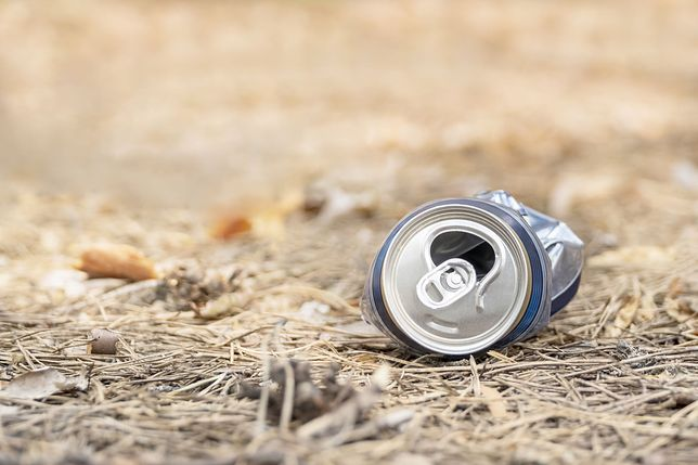 Śmieci są realnym zagrożeniem w lasach
