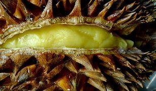 Rozwiązano śmierdzącą zagadkę duriana