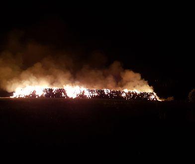 Pożar w Lisięcicach. Trwa dogaszanie ognia