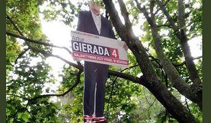 Powiesili na drzewie wizerunek Artura Gierady z PO. Policja zatrzymała dwóch mężczyzn