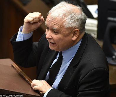 Radny PiS składa skargę. Poszło o Kaczyńskiego z wąsem Hitlera