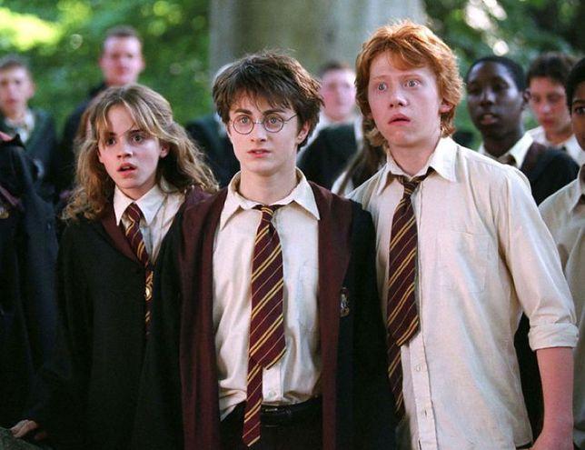 Harry Potter i domowa kwarantanna. Ruszyła nowa akcja dla fanów czarodzieja