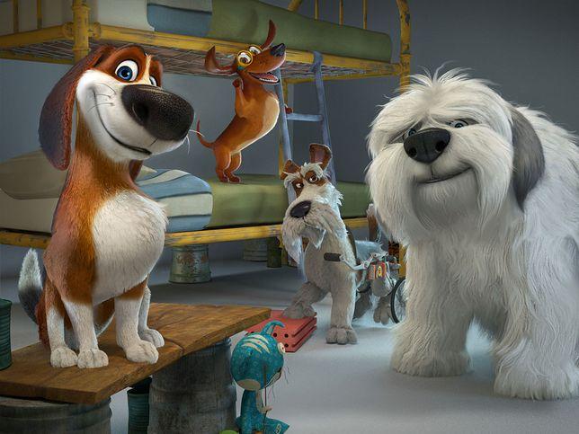 """""""Ozzy"""": idealny film dla całej rodziny i wszystkich miłośników domowych pupilów w kinach od 3 marca"""