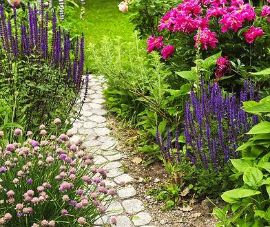 Kilka kroków wystarczy, by ogród był gotowy na wiosnę