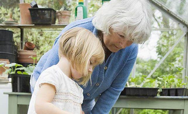 Babcia gotowa do pomocy. Dziadek chce się przydać