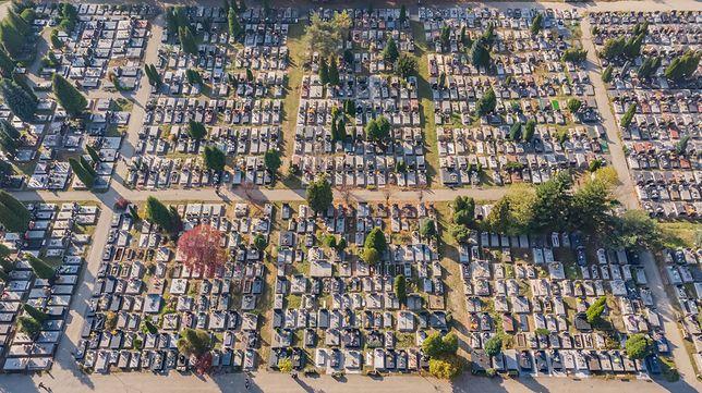 W tym roku wizytę na cmentarzu lepiej odłożyć na później, by uniknąć tłumu