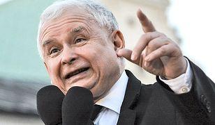 Jarosław Kaczyński znany jest ze swojej sympatii do zwierząt. Dlatego nie powinno dziwić, że podpisał się pod ustawą