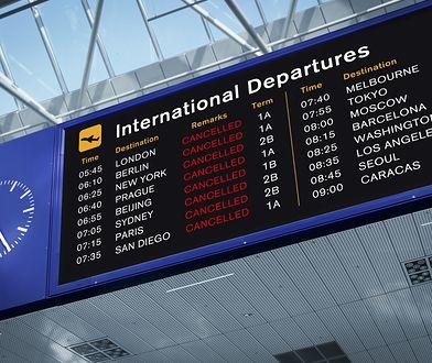 Co zrobić w sytuacji, gdy nasz lot jest odwołany?