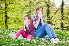 Leki na alergię - przeciwzapalne, antyhistaminowe, rozszerzające oskrzela