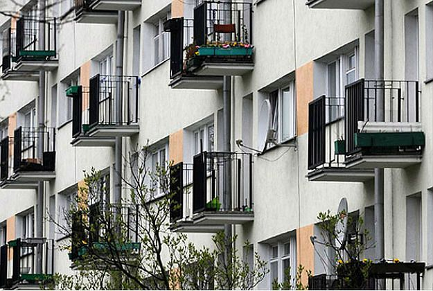 Sąsiad potrzebny od zaraz! W Krakowie ruszył konkurs