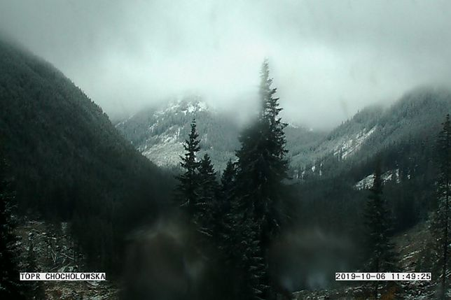Widok z kamery TOPR na Dolinę Chochołowską w Tatrach