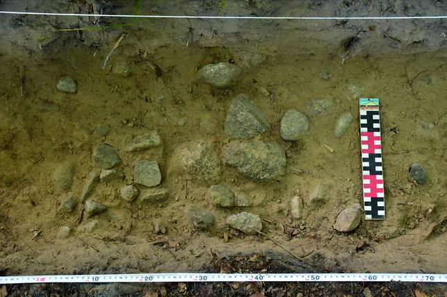 Kamienie, z których została zbudowana miedza