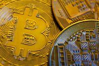 """Ofiary oszustwa """"na bitcoina"""" tracą miliony złotych. Policja często jest bezradna - Bitcoin"""