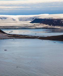 Dramatyczne wieści z Arktyki. Woda z topniejących lodowców mogłaby zalać Holandię