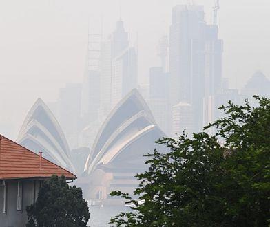 Mgła powstaje w wyniku skraplania się pary wodnej w atmosferze
