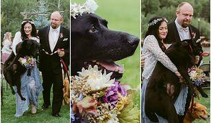 Te zdjęcia podbiły internet. Druhna poniosła umierającego psa panny młodej do ołtarza