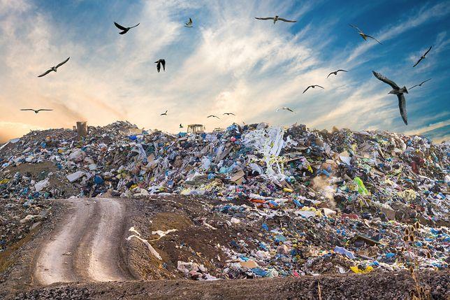 GUS: produkujemy coraz więcej śmieci