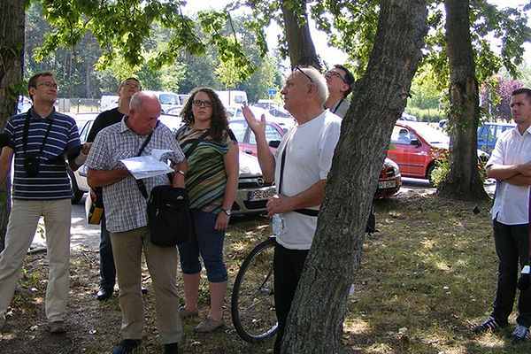 W Poznaniu chcą wyciąć 40 drzew, bo mieszkańcom przeszkadza biały puch