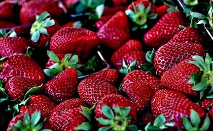 Efekt wiosennej aury we Włoszech: są już pierwsze truskawki i karczochy