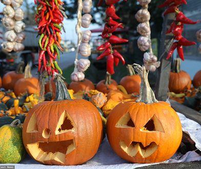 """""""Holy wins"""" i Bal Wszystkich Świętych chrześcijańską alternatywą dla Halloween"""