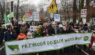 """Protestowali w obronie przyrody. """"Nie dla niszczenia środowiska!"""""""