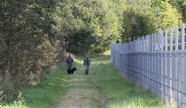 Mur bałtycki. Litwa, Łotwa i Estonia odgradzają się od Rosji