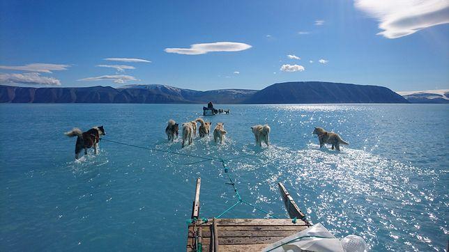 Efekt cieplarniany. Naukowiec pokazał zdjęcie obrazujące skalę problemu