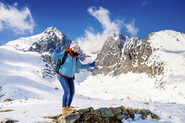 Czy niedźwiedź zdąży omyć pysk w strumieniu? Najlepsze teksty turystów w Tatrach