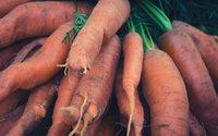 Sieci supermarketów kupią brzydsze warzywa i owoce. Chcą wspomóc rolników