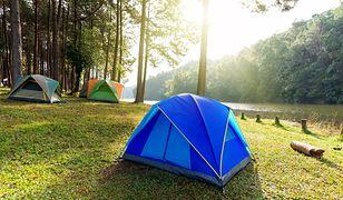 Duży przegląd dużych namiotów. Modele dla całej rodziny w dobrej cenie
