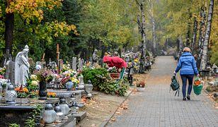 Z nagrobków znikają głównie znicze i kwiaty