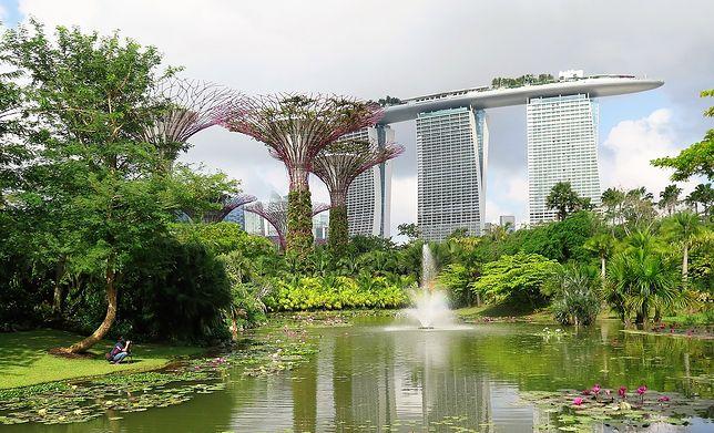 Hotel Marina Bay Sands w Singapurze, wieżowiec, ogród ze stawem i fontanną