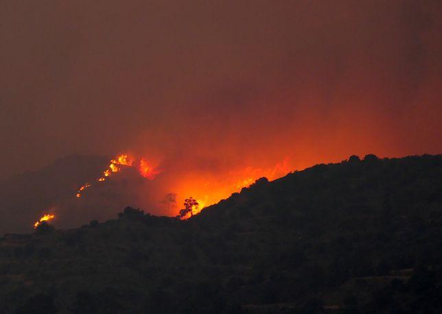 """Cypr. Płoną lasy u podnóża Troodos. """"Najgorszy pożar w historii"""""""