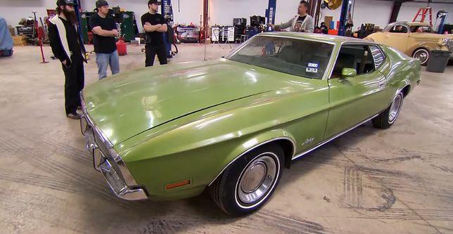 Zielony, ohydny Mustang zamieniony w pięknego łabędzia