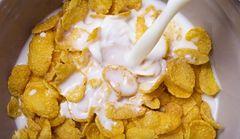 Czym zastąpić mleko, gdy nie tolerujemy laktozy?