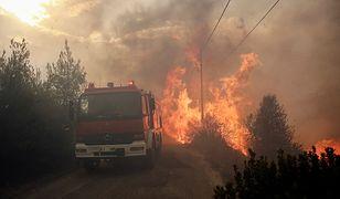 Ogień trawi wszystko na swojej drodze, głównie w okolicy Aten