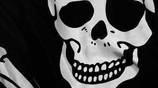 BitCannon, czyli BitTorrent uodparnia się na zamykanie stron