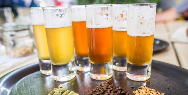 Ewolucja piwa. To bardziej skomplikowane, niż nam się wydawało!