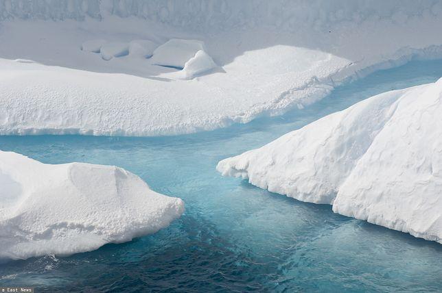 Kolejne ekstremalne zmiany na Antarktydzie