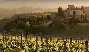 Włochy. Pandemia koronawirusa może negatywnie wpłynąć na produkcję wina