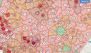 Koronawirus w Polsce. Jak Kolbuszowa obroniła się przed epidemią. Już w marcu uszyli sobie maseczki