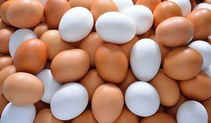 Najwięcej jaj polscy producenci sprzedają do Niemiec, Holandii, na Węgry i do Francji
