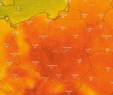 Fala upałów 2019: Nadchodzą ekstremalne upały. Pogoda zaskoczy gorącem jeszcze w tym tygodniu