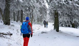 Gdzie polskie gwiazdy spędzą tegoroczne ferie zimowe?