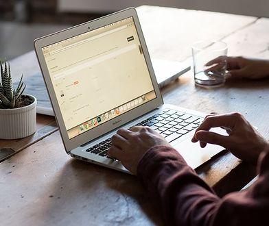 Grafik freelancer - jak zacząć i czy warto?