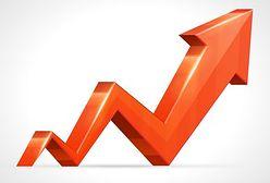Badanie: co czwarta firma planuje zwiększyć zatrudnienie