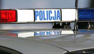 Policja rozbiła grupę złodziei samochodów