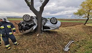 Jawor. Samochód owinął się wokół drzewa. Kierowca wyszedł z niego o własnych siłach