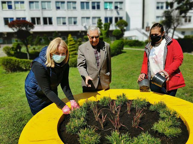 Wrocław. Na ulicy Radosnej będzie jeszcze piękniej. Pan Jan odebrał nagrodę za drugie miejsce w konkursie Terra Flower Power
