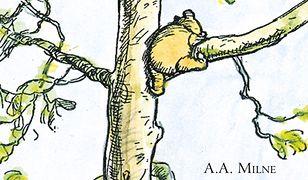 Niedźwiodek Puch